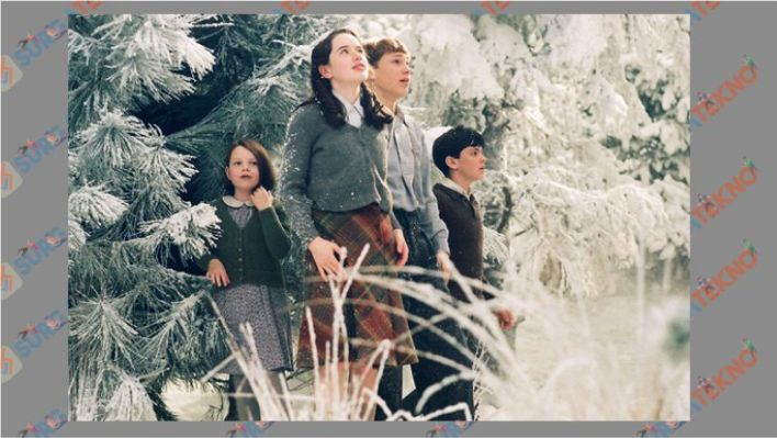 The Chronicles of Narnia The Lion, The Witch, and The Wardrobe (2005)