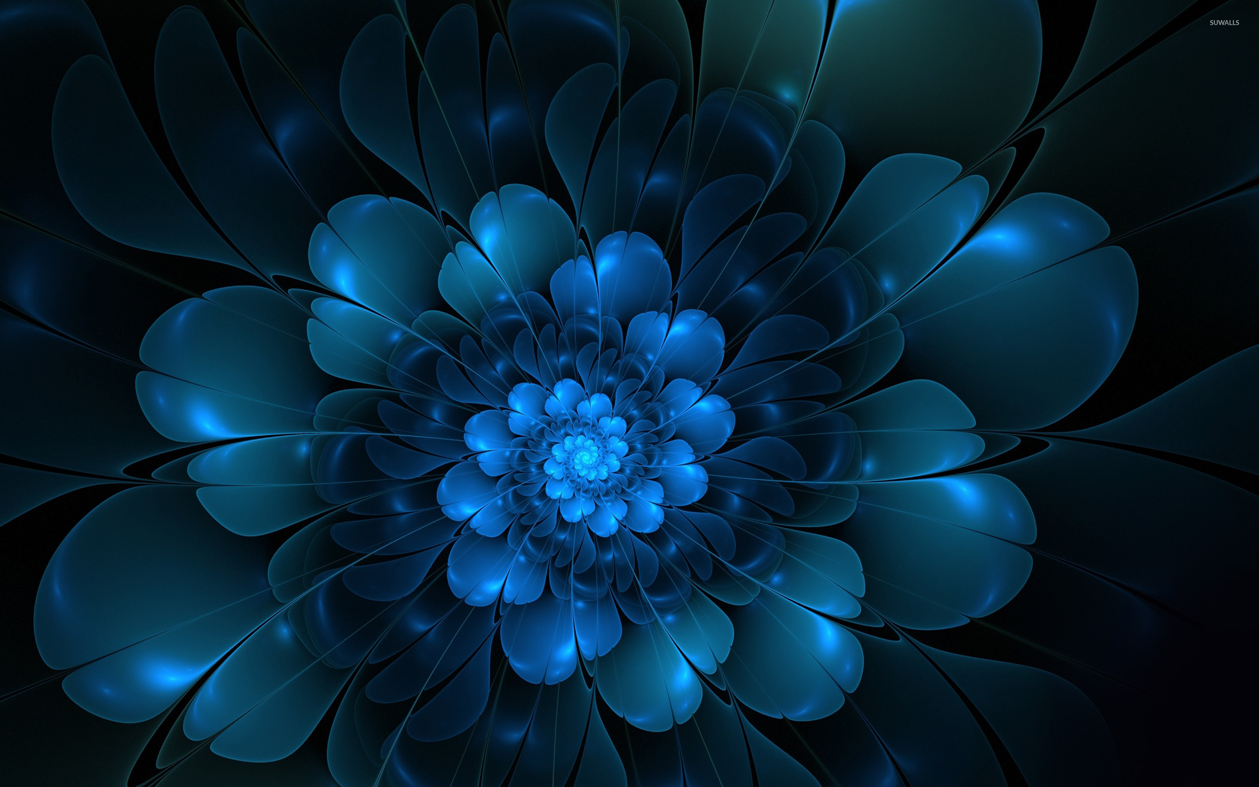 Flower Wallpaper Abstract Wallpapers 8555