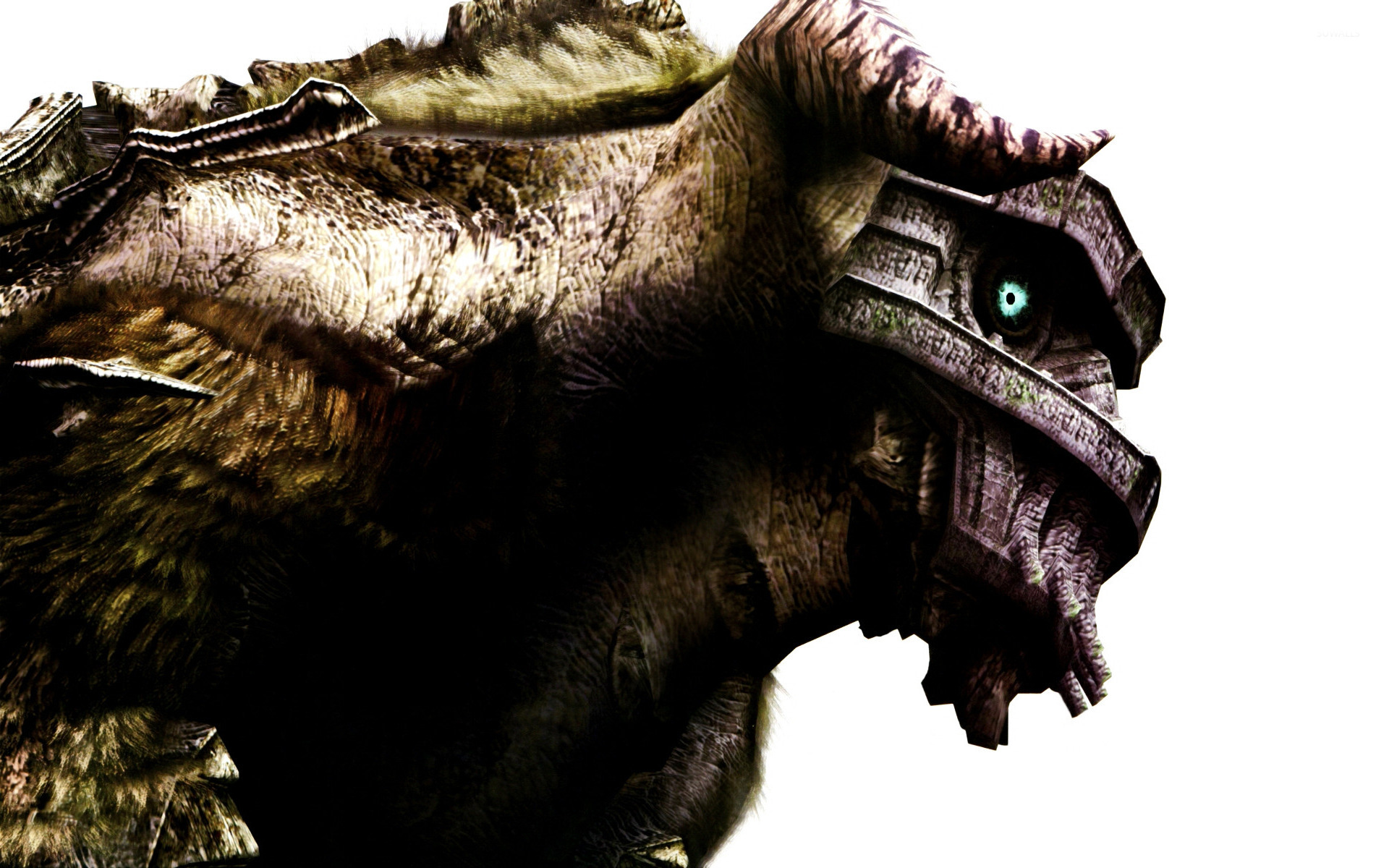 Shadow Of The Colossus 3 Wallpaper Game Wallpapers