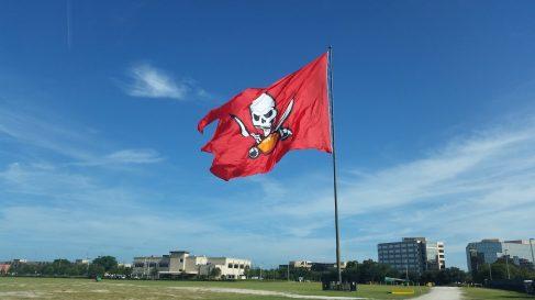 Tampa Bay Buccaneers | sports turf | STI