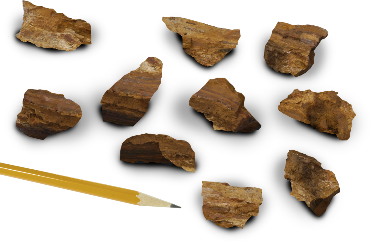 Mineral Quartz Silicified Wood Pack Of 10