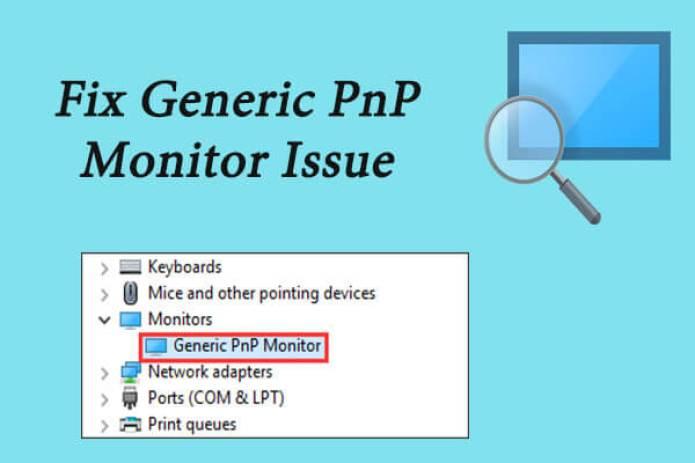 generic PnP monitor
