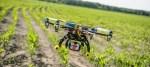 drones crop analyzes