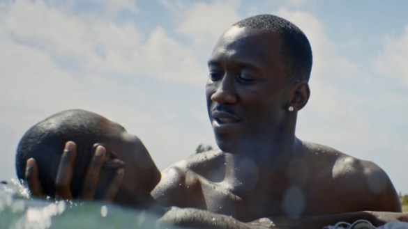 Review  Barry Jenkins s  Moonlight  Is One of the Best Films of the     A24