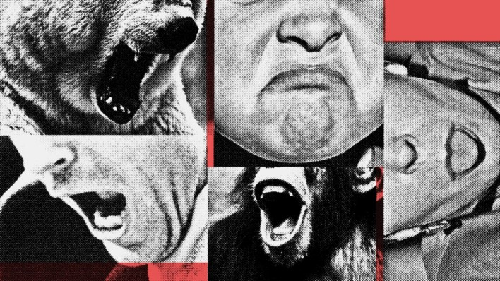 Photo illustration of angry people and animals