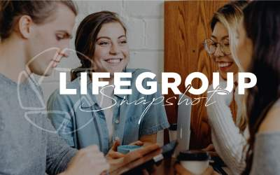 LifeGroup Snapshot