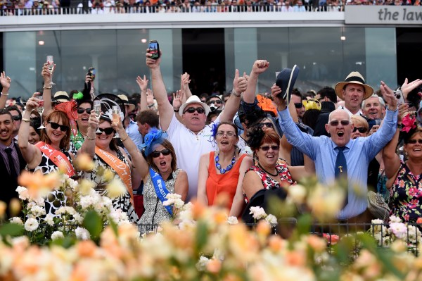 Punting on exports: a Melbourne Cup form guide to the ...