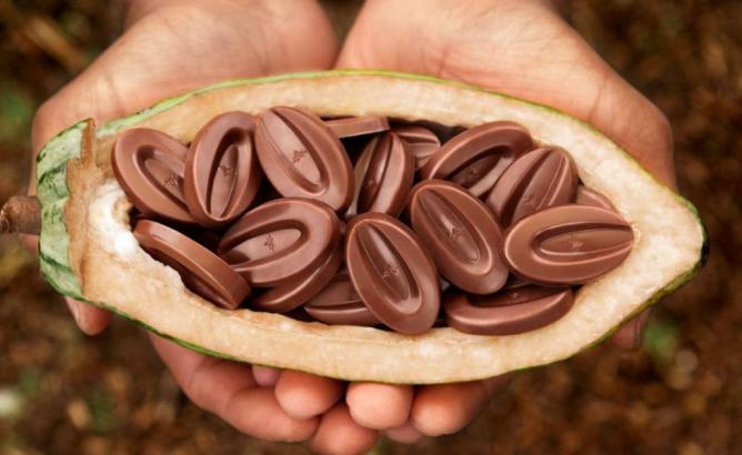 The Top Chocolatiers In France For Sweet Tooths