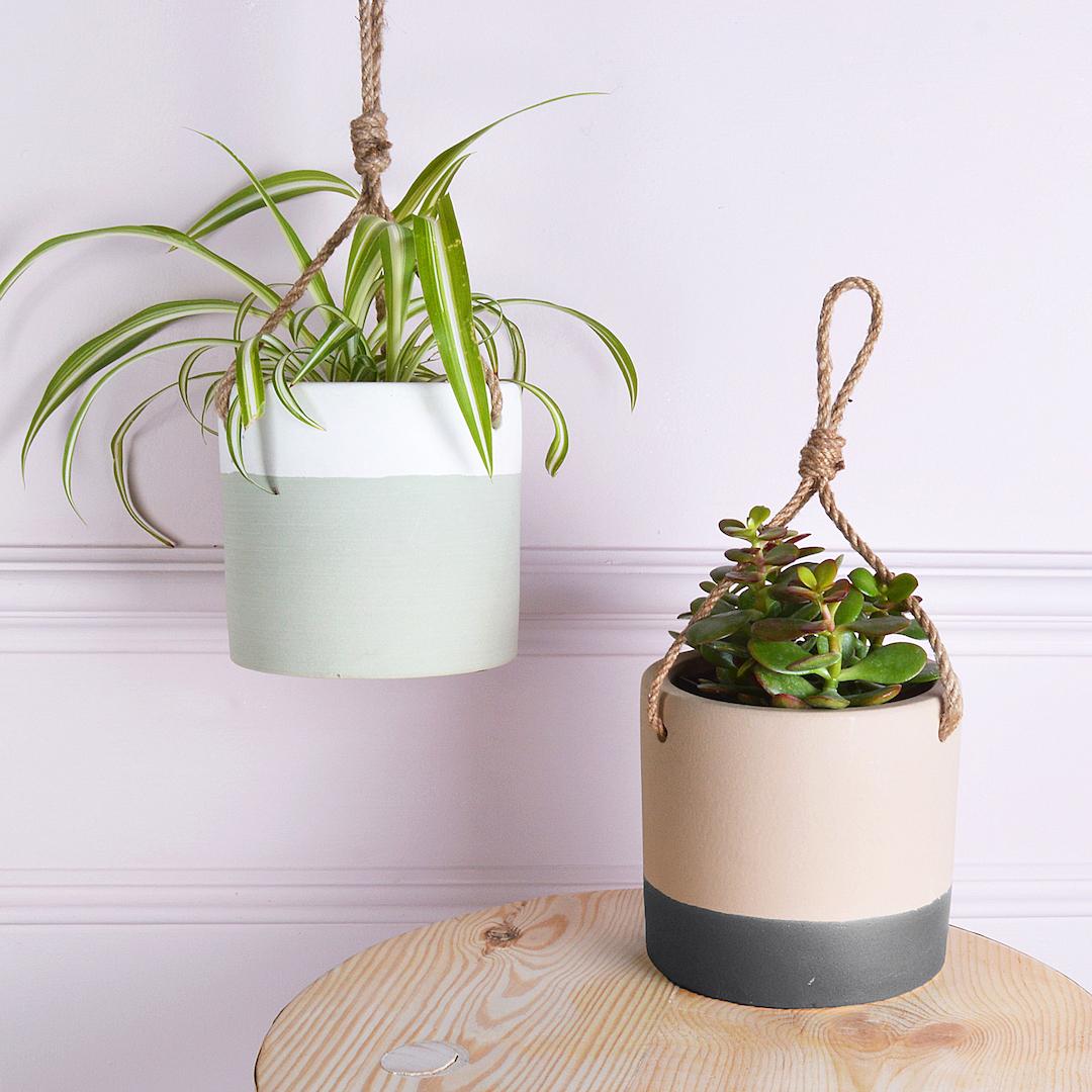 How To Create A Beautiful Indoor Garden This Winter on Hanging Plant Pots Indoor  id=98928