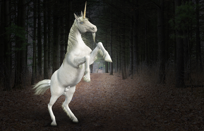 Johnson pledges tax cut for unicorn breeders