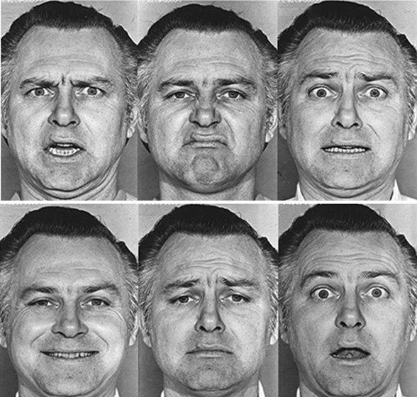 Résultats de recherche d'images pour «image émotions ekman»