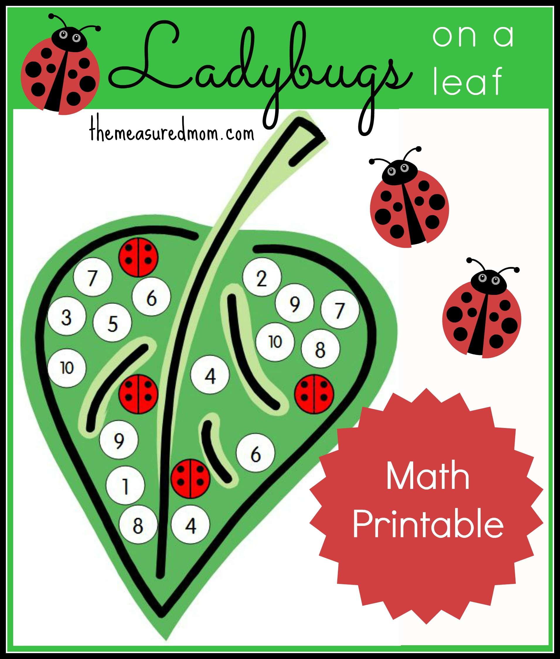 Number Recognition Activity Ladybugs On A Leaf