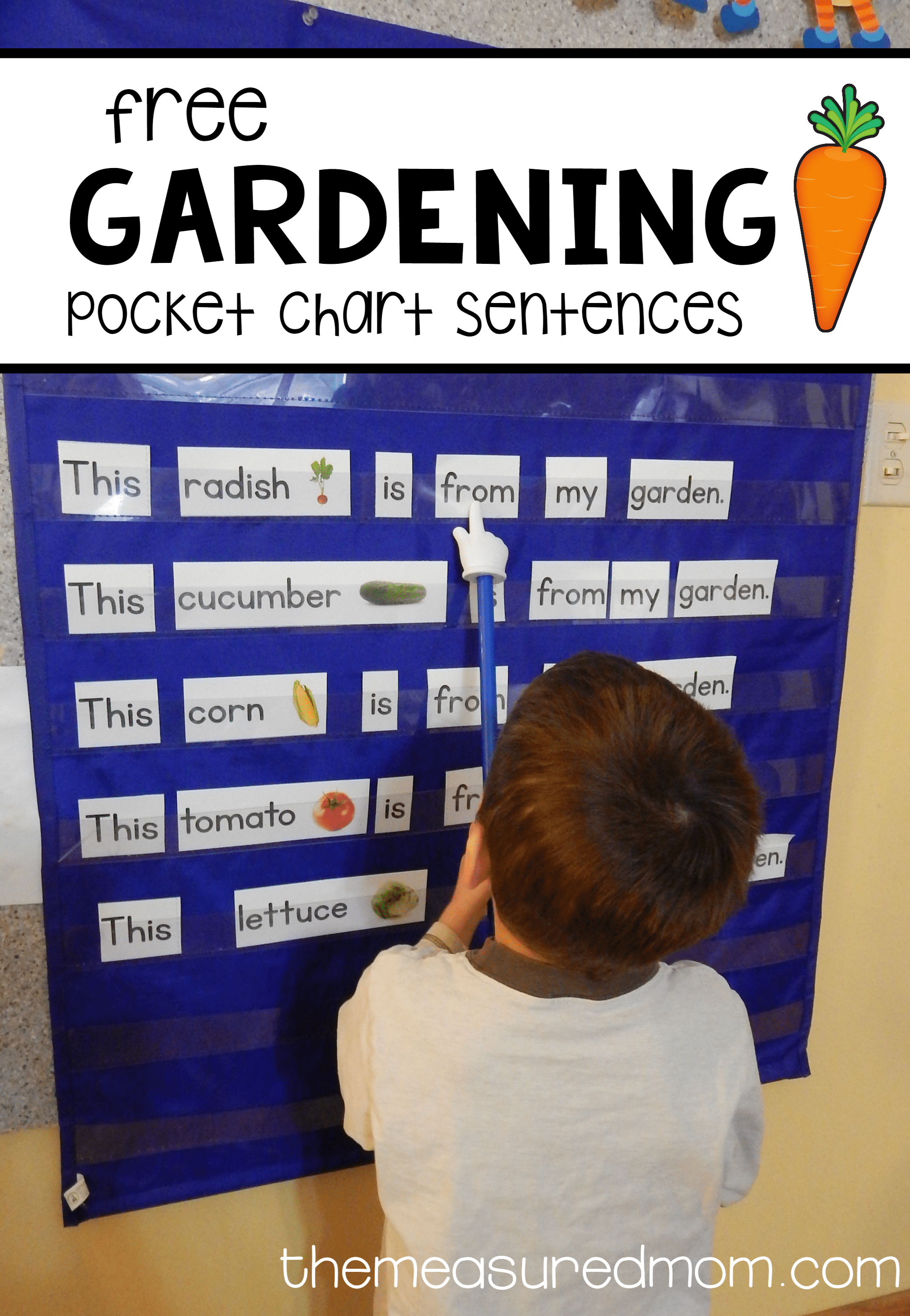 Pocket Chart Sentences For A Garden Theme