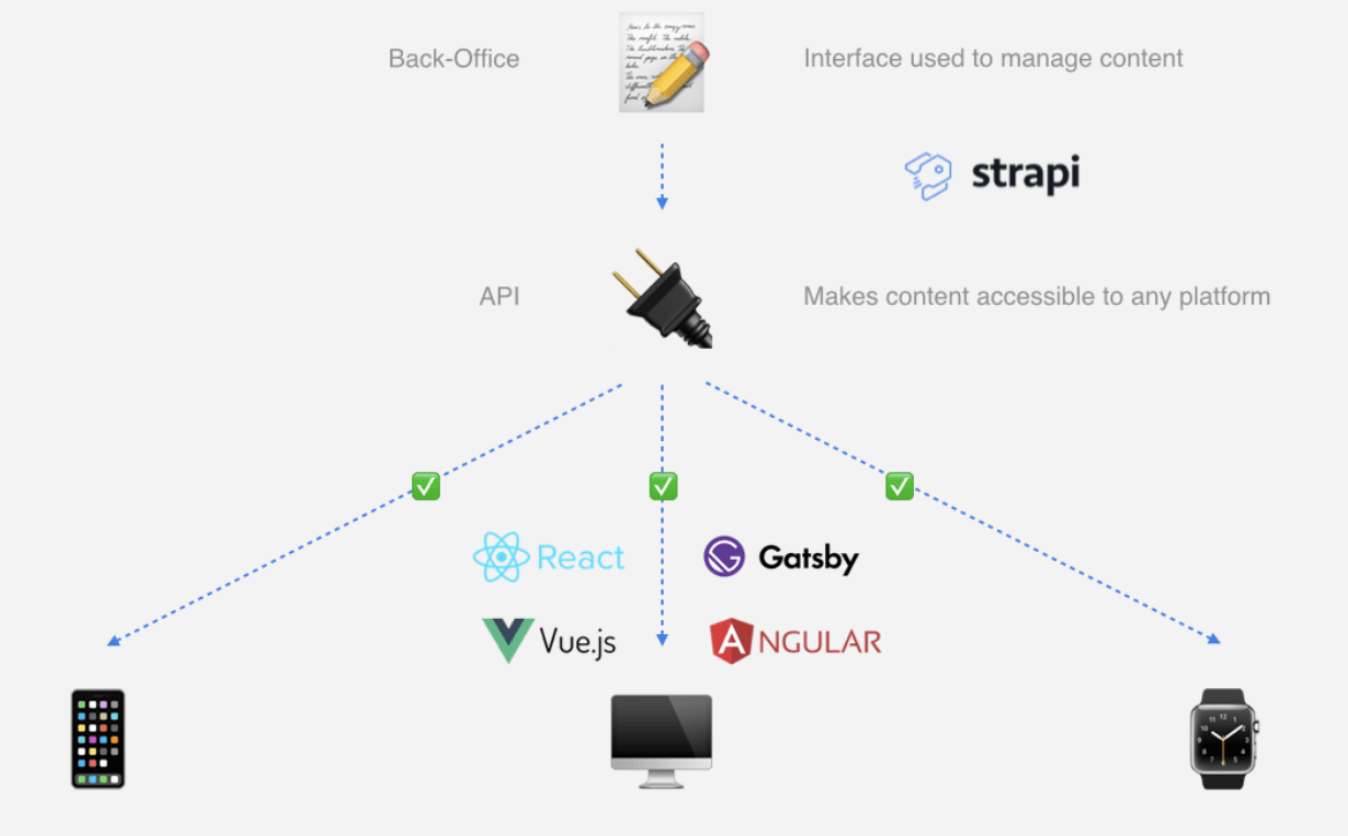 Strapi S Headless Cms And Lessons Learned From Docker
