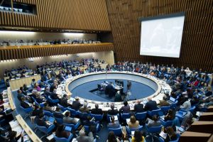 Day 1 of the WHO Executive Board meeting. Credit: V. Martin