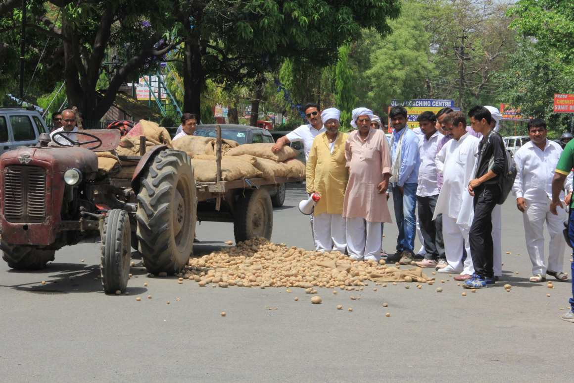 Farmers dump potatoes on the streets in Meerut in March 2017. Credit: Munish Kumar