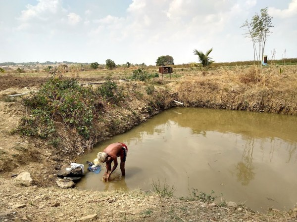 helping farmers help themselves ciats contribution to - 987×740
