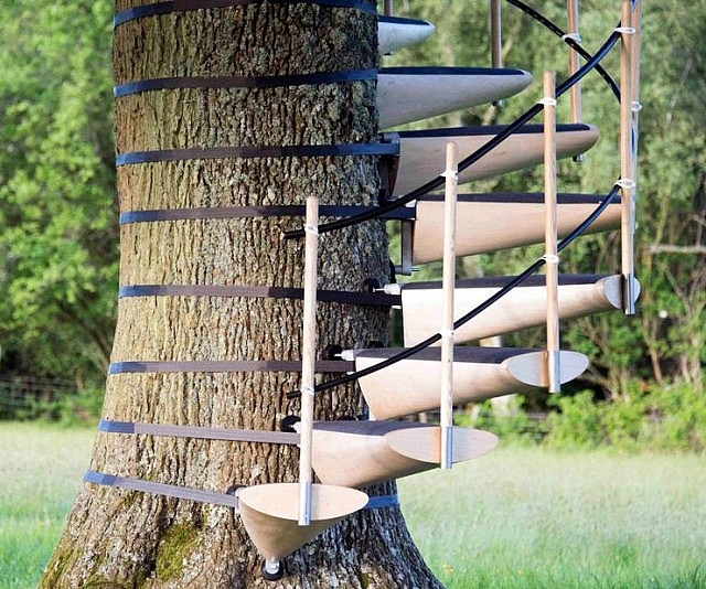 Tree Trunk Spiral Staircase | Spiral Staircase Tree Trunk