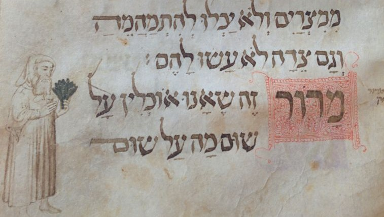 A page from the 14th century Wolff Haggadah, at the National Library, showing a Medieval Jew holding bitter herbs (photo credit: Ilan Ben Zion/Times of Israel staff)