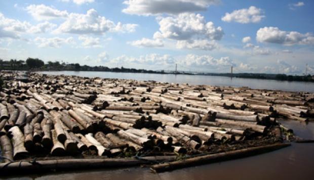 COP21 Paris, Begini Cara Indonesia Tekan Emisi Karbon