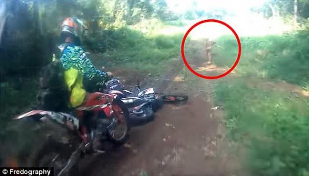 Telusuri Suku Mante, Gubernur Aceh Minta Stafnya Pelajari Video