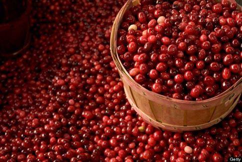 蔓越莓可以幫助抵抗感染現象,還有豐富花青素幫助體內抵抗自由基侵害。(圖片/取材自美國《赫芬頓郵報》)