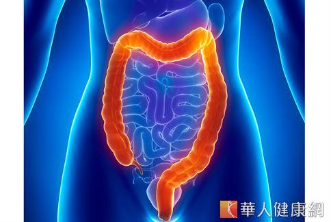 腸道是身體的保護傘,因此養成好腸道變得致關重要。
