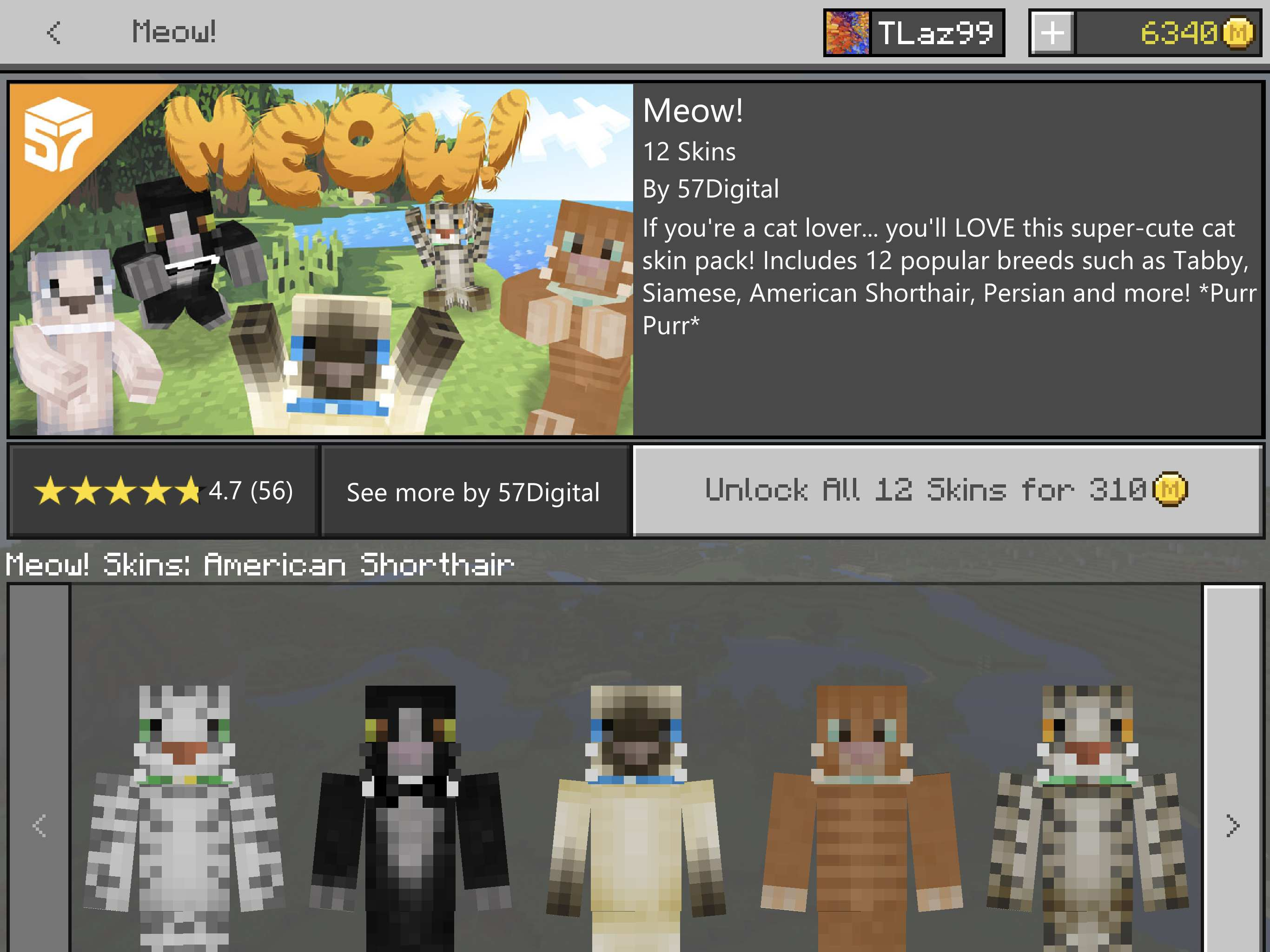 Best 'Minecraft' Skins On the Marketplace—'Star Wars