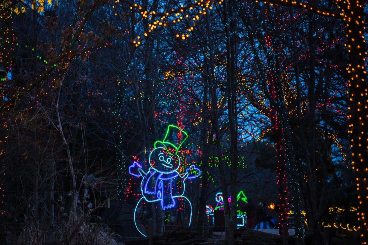 Zoo Lights Chicago Parking
