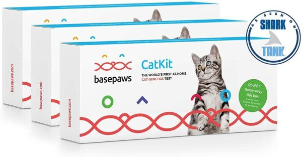 At-Home Cat DNA Tests : At-Home Cat DNA Test