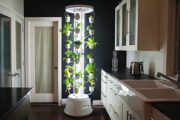 indoor vertical garden system Luminous Vertical Gardens : indoor hydroponic system