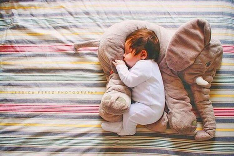 contoured animal infant pillows plush