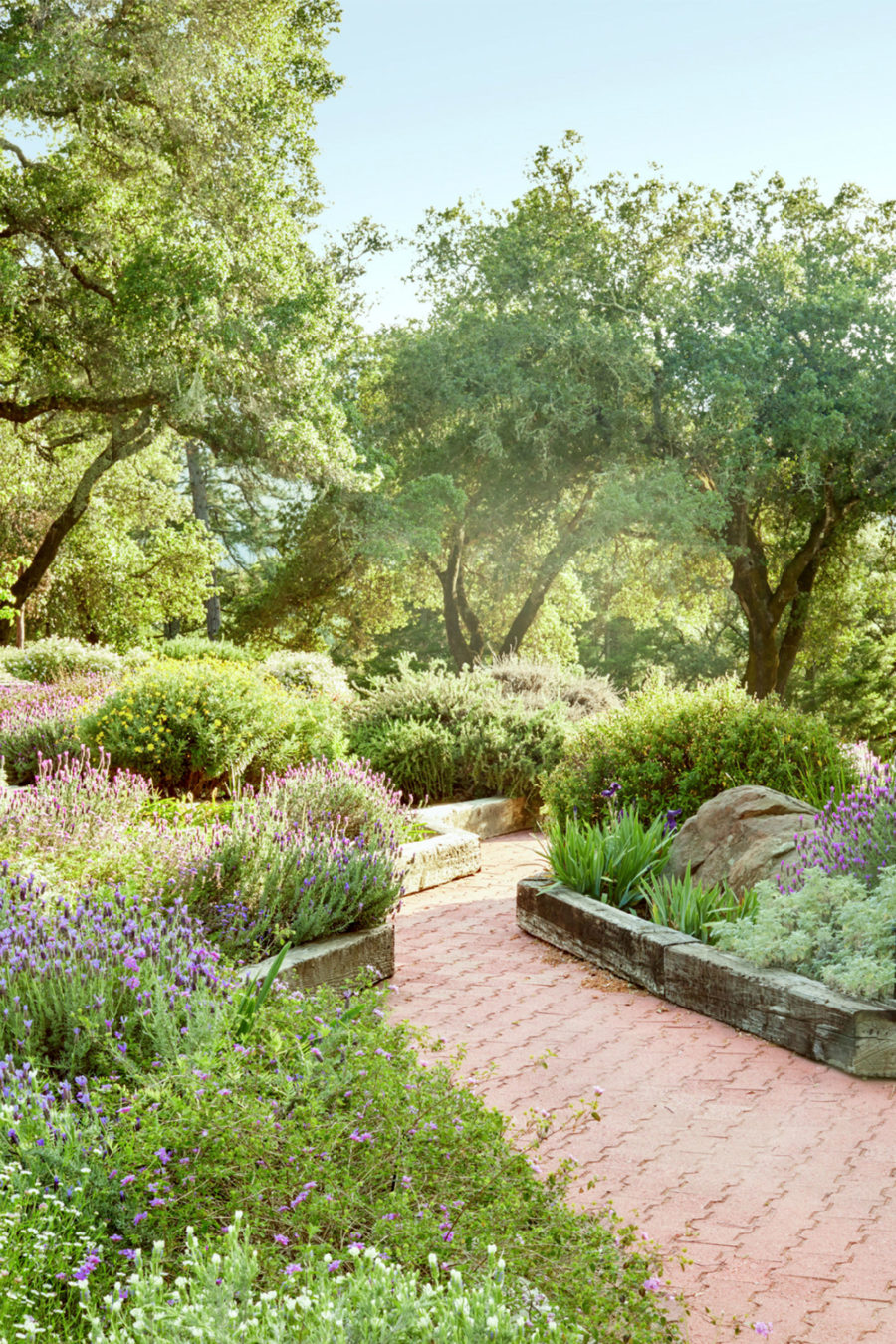 Easy and Cool Landscape Ideas on Small Landscape Garden Ideas id=92269
