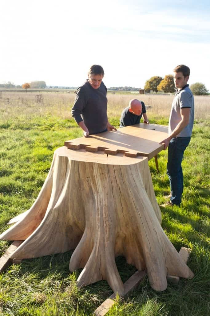 it took 8 months to uproot tree stump