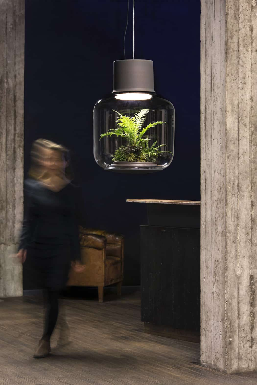 Self Contained Ecosystems Amazing Light Fixtures With