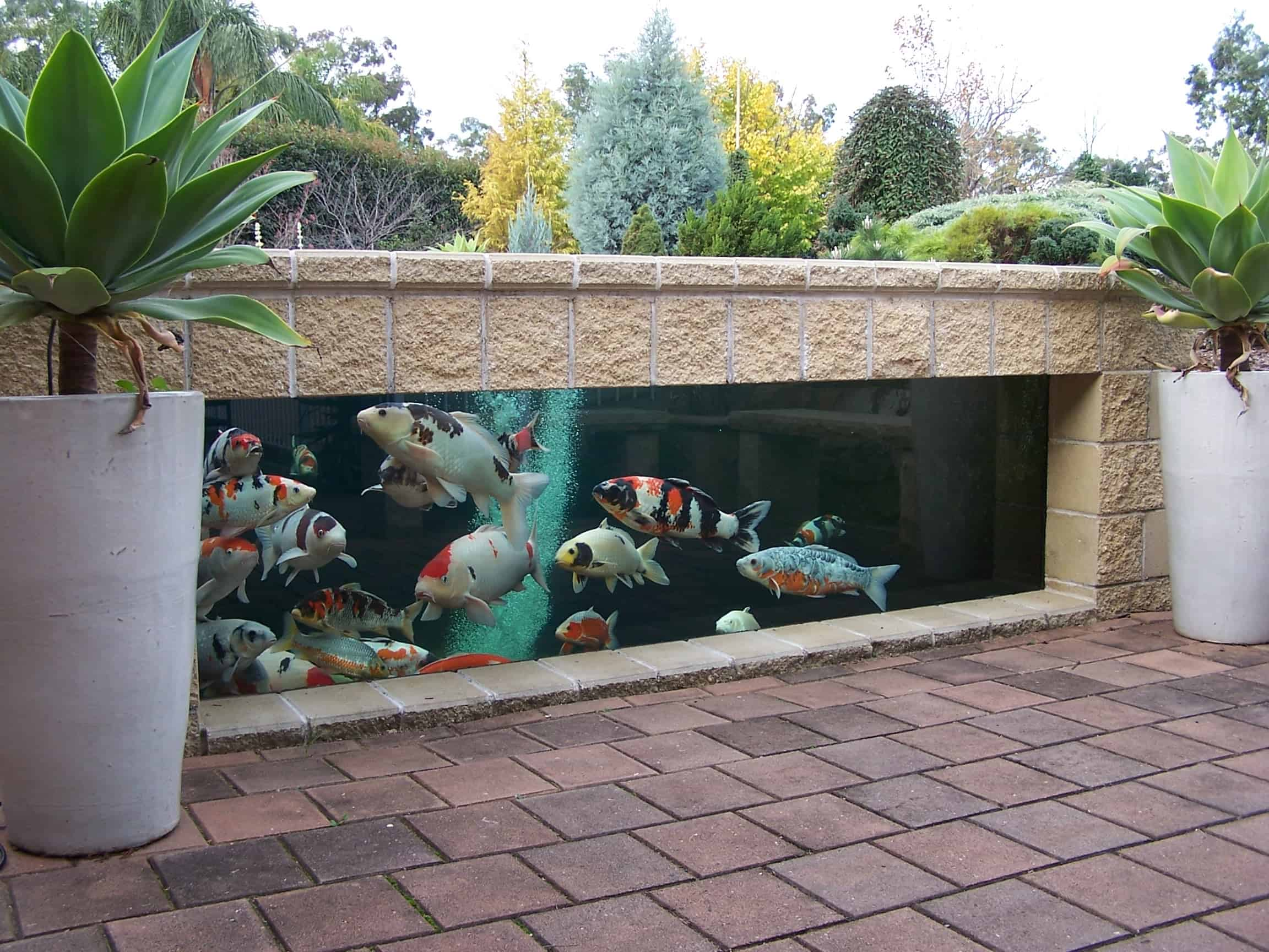 35 Sublime Koi Pond Designs and Water Garden Ideas for ... on Koi Ponds Ideas  id=50137