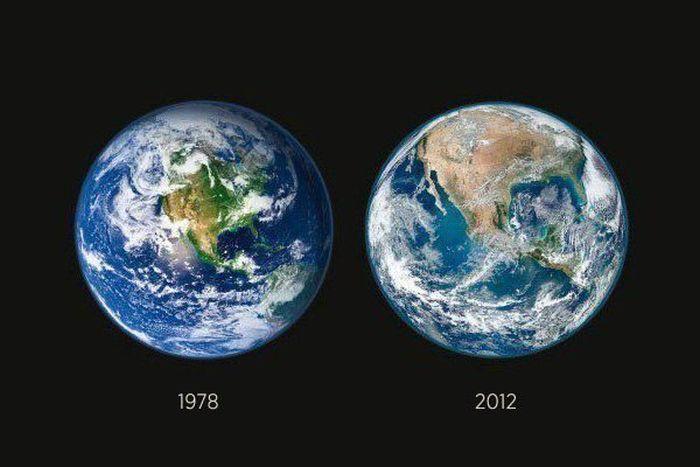 Dünya'yı Yok Ediyoruz