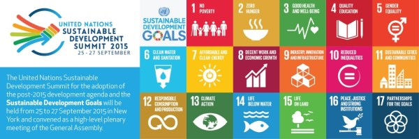 The 3BL Case for the UN Sustainable Development Goals