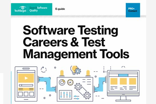Software development information