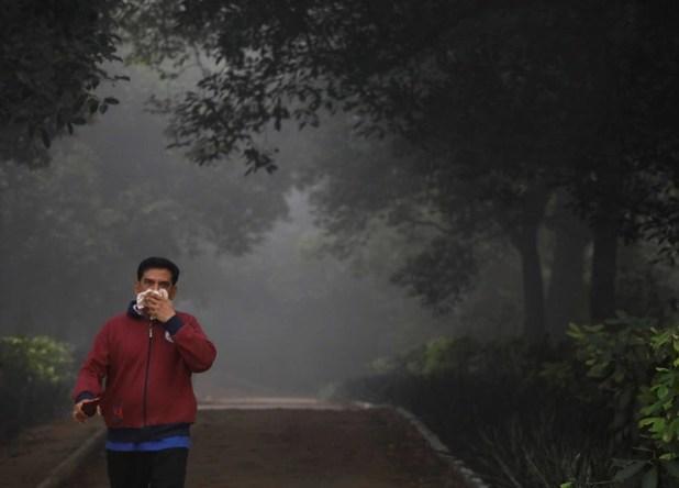 New Delhi tuyên bố tình trạng khẩn cấp vì ô nhiễm không khí - Ảnh 3.