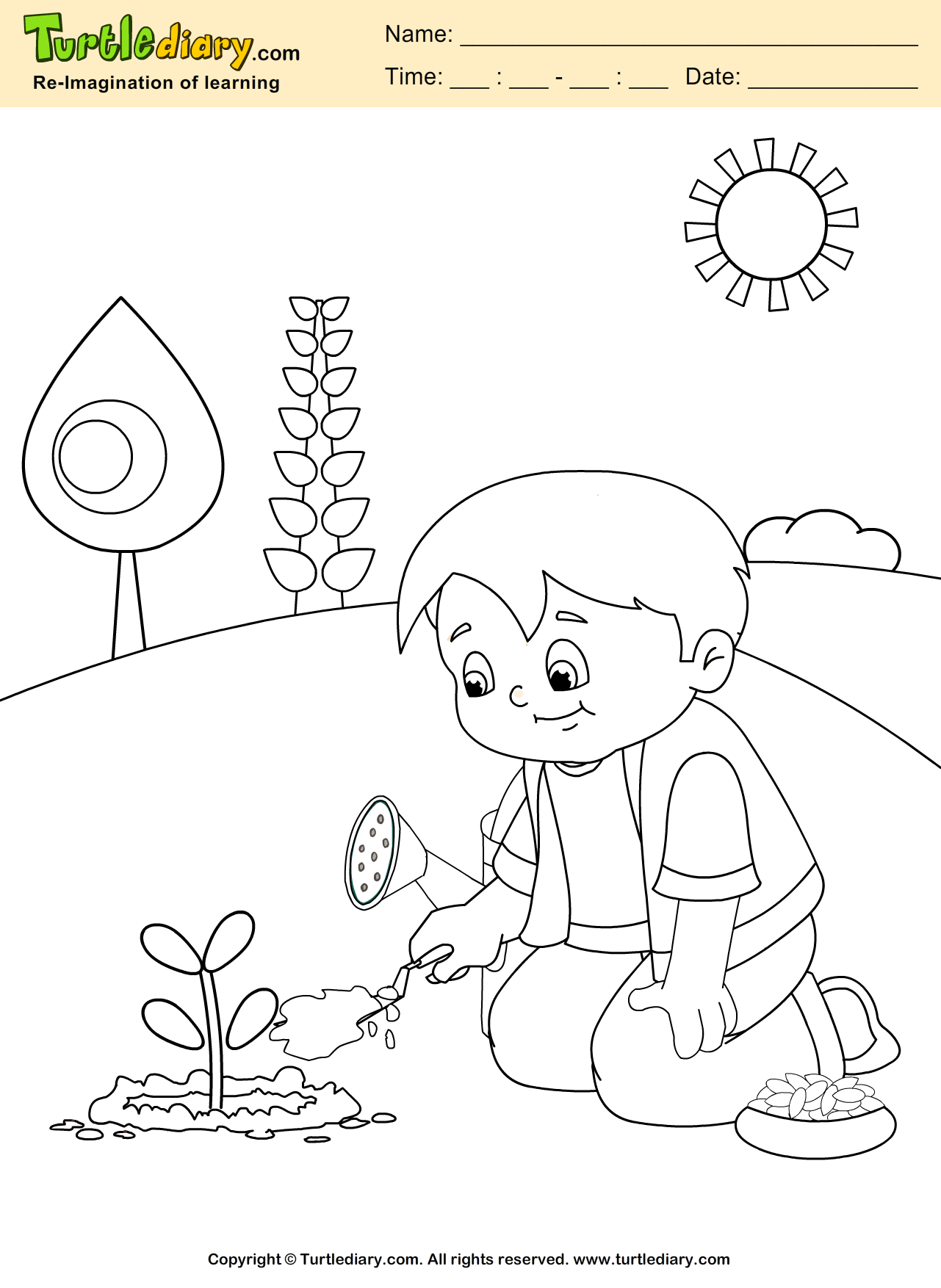 Grow Plant Coloring Sheet