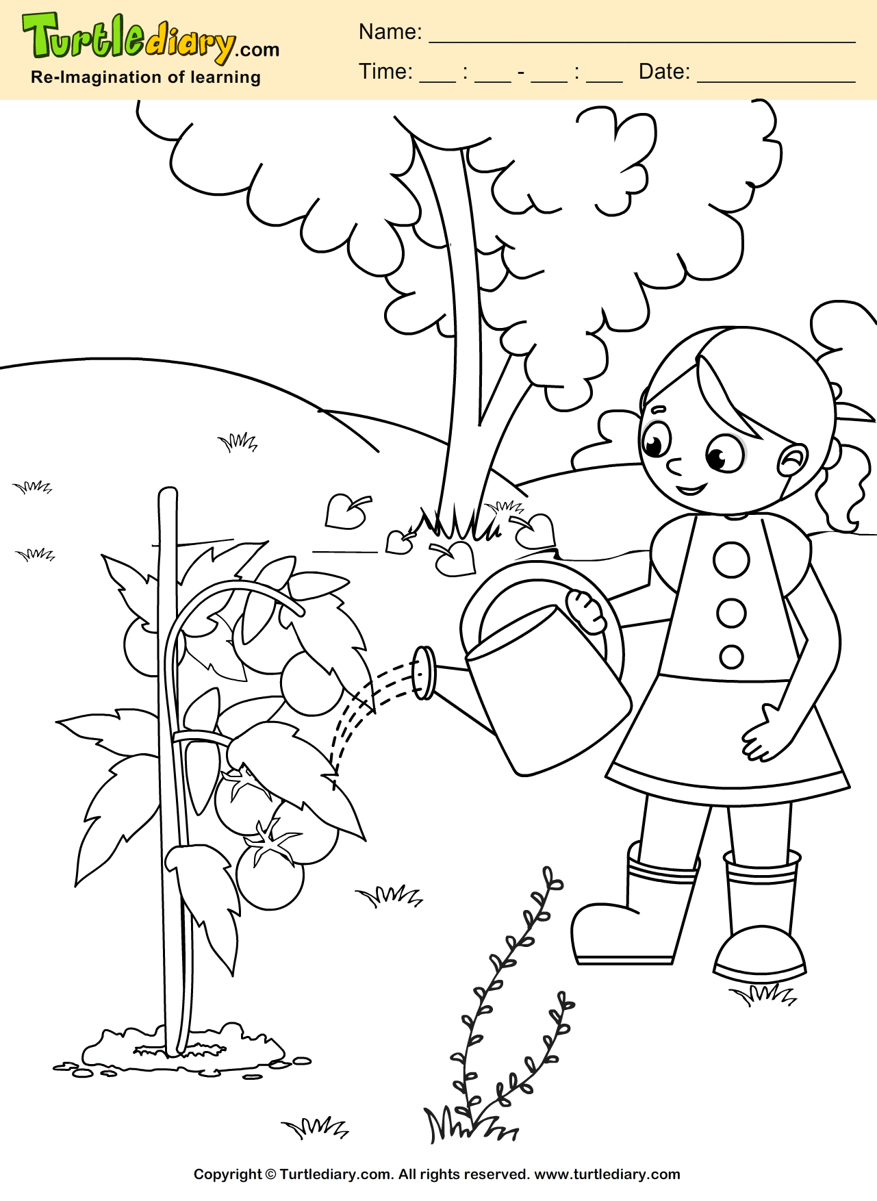 Water Plant Coloring Sheet