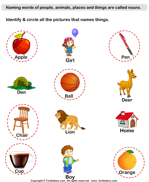 Identify Thing Nouns Worksheet