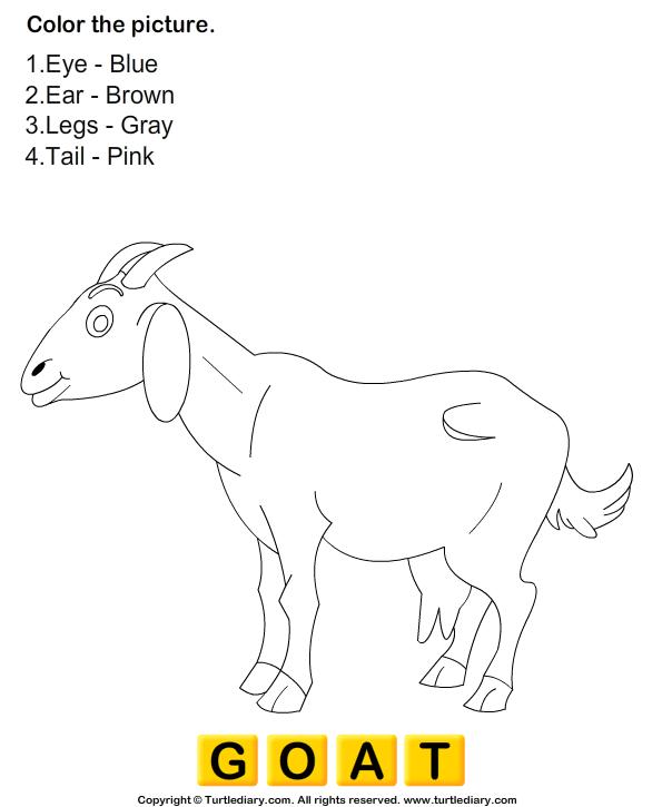 Image Result For Third Grade Math