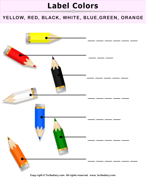 Label The Colors Worksheet