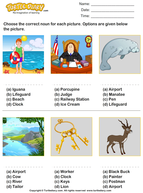 Noun For Picture Given Worksheet