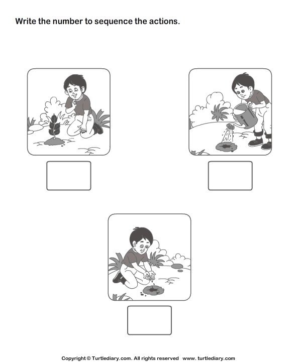 Picture Sequencing Boy Planting A Tree Worksheet