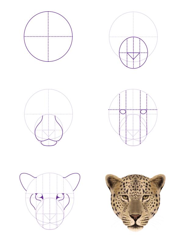 Easy Drawn Pics Leopards