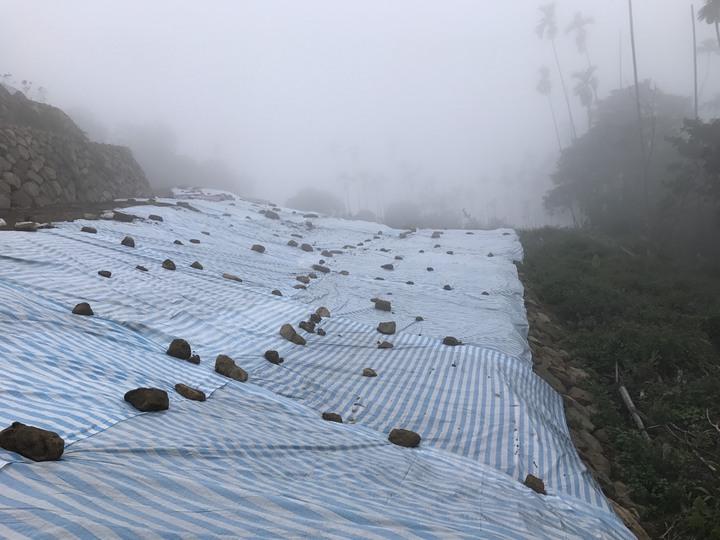 影/阿里山公路山頭光禿造成泥流 縣府查地主整坡是否越界開挖 | 綜合 | 聯合影音