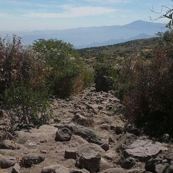 Prehispanic road between Tuna and Tupicocha